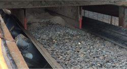Skirting installed on conveyor
